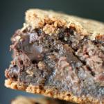 chocolate-malt-bars-close-up
